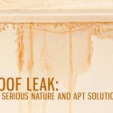 Roof Leak: Its Serious Nature and Apt Solutions